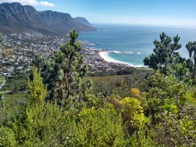 on descent from Lions Head